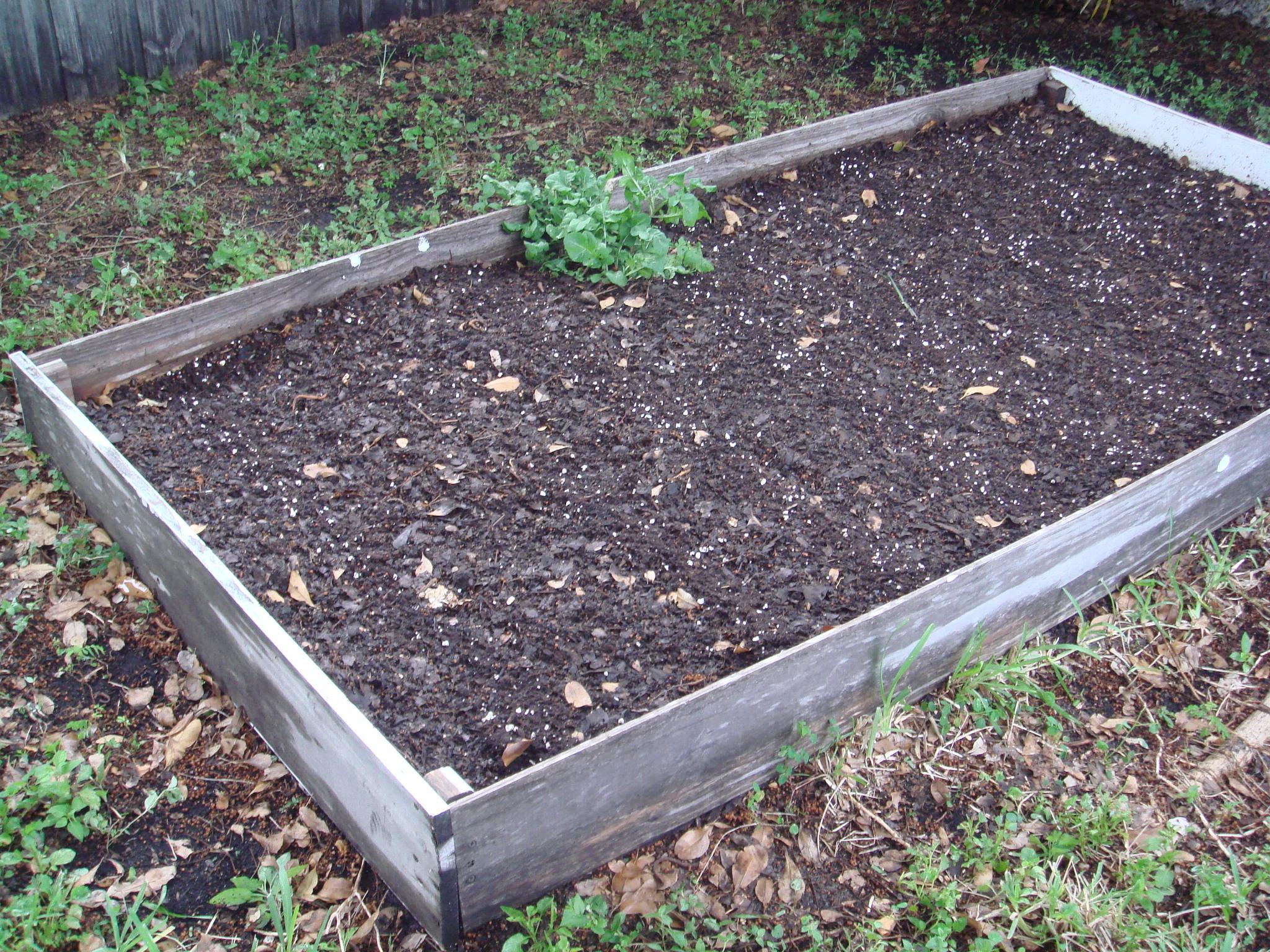 Raised Bed Garden Soil Planting In Raised Bed Garden Image Titled Prepare A Raised Bed Garden