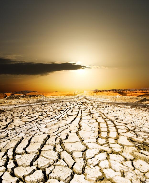 desertification - photo #20